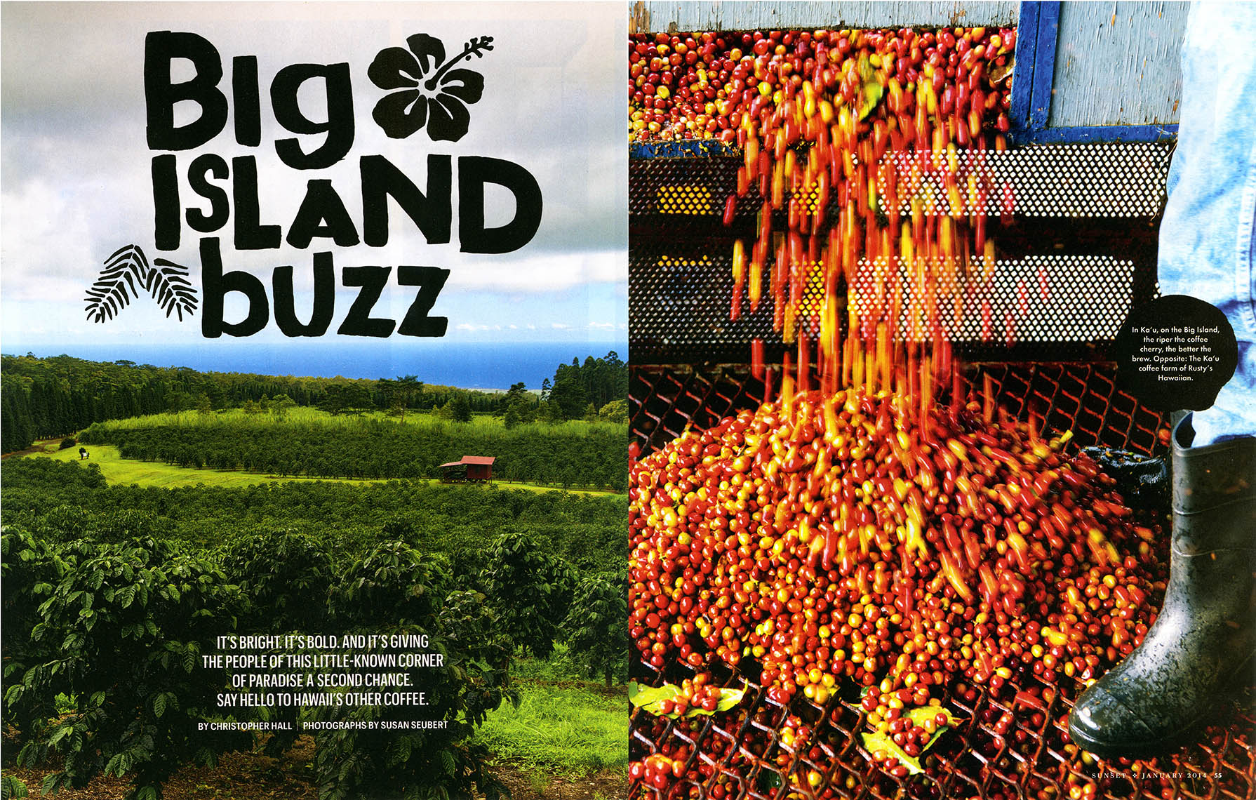 big_island_spread_1
